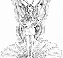 The Moth Fairy by Stephanie Smith