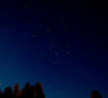 The Orion Constellation by Tim Ray