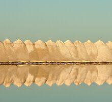 Dry Creek Salt Pans by Paula McManus