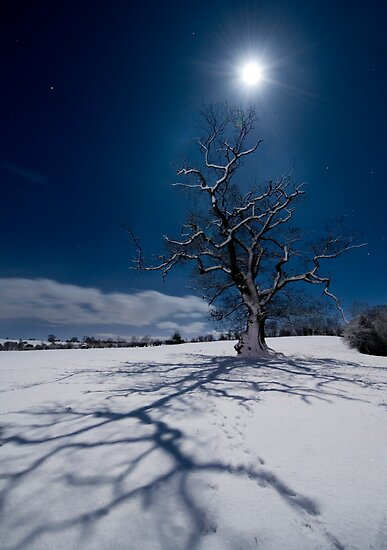 Happy New Year 2010, Yorkshire Dales by Ian Snowdon /     www.downtoearthimages.co.uk