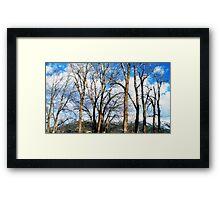 Embracing the Sky Framed Print