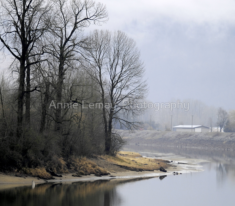 Trees on the Slough by Annie Lemay  Photography