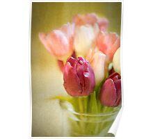 Tulips in Glass Vase Poster