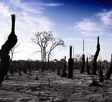 Ashlands - Toodyay Fires. by Boxx