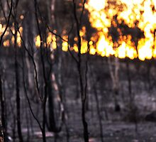 Warm Backdrop - Toodyay Fires. by Boxx