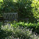 cottage garden bench beyond Brachycombe by BronReid