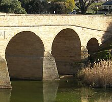 close up of Richmond Bridge           by michellerena