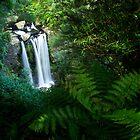 Hopetoun Falls - Great Ocean Road by rebecca brace