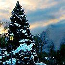 Snowy Sunset by Susan Savad