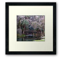 Gemini Springs Park Framed Print