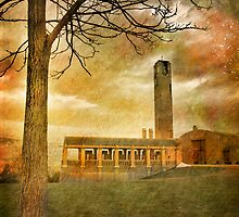 The Tree and the Bell Tower by Tara  Turner