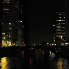 Cruising on the Chicago River by Vivian Orasco