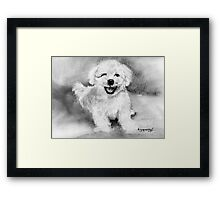 What Bichon's Do to Make You.....Smile Framed Print