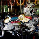 Cafesjian's Carousel, Como Park, Minnesota by shutterbug2010