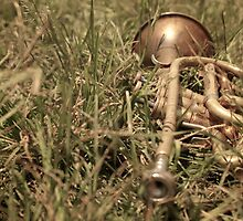 Instrumental Age by Karl Lindsay