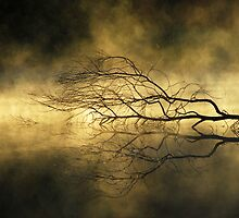 Pritchard's Mist by Wayne England
