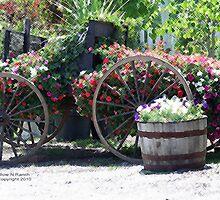 Horse Drawn Flower Wagon by Trish  Bowen