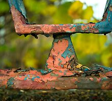 A Rusty Y by Orla Cahill Photography
