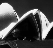 Opera House steps by Juilee  Pryor