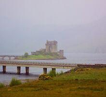 A Misty Morn by Lynne Morris