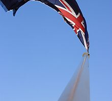 Billowing Flag by Sarah D