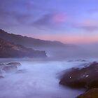 Sea Lion Cave, Point Lobos, Carmel California by Maria Draper
