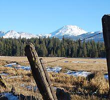 Mountain Meadow by dwservingHim