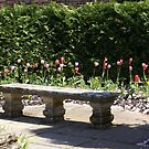 Falkland Palace, Scotland, bench by pond by BronReid