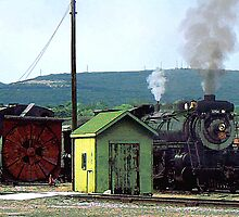 Steam Engine 3254 Coming into Train Yard by Susan Savad