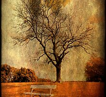 Park Bench by Gerry Chaney