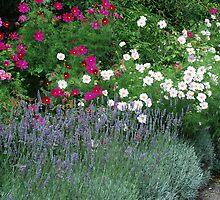 Lavender & Friends - Royal Roads University by Lorraine Brown