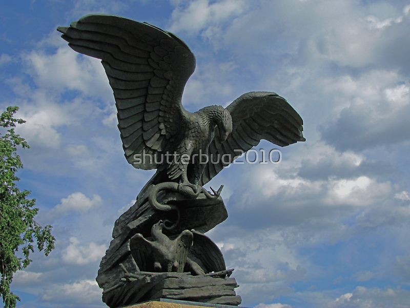 The Wings Of Freedom by shutterbug2010