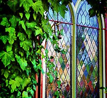 Stained Glass and Ivy by Barbara  Brown
