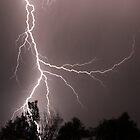 Lightning Strike by Mark Hamilton