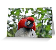 What`s Up Greeting Card