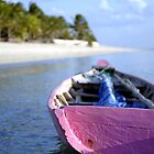 Pink Boat, Roti, Indonesia. by Stewart Allen