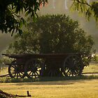 Cart at Dawn by Rowan Nancarrow