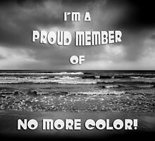 No More Color group challenge banner by Silvia Ganora