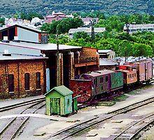 Inside the Train Yard by Susan Savad
