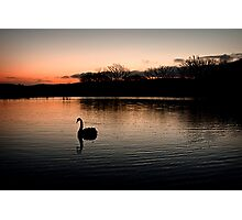 Solo at Sunset Photographic Print
