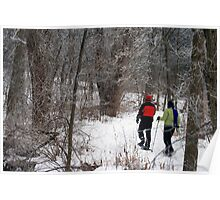 Snow Shoeing In The Park Poster