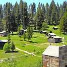 Garner Ghost Town in Montana by Susan Russell