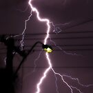 Lightning among the powerlines- Kalgoorlie, Western Australia by Ashli Zis