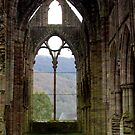 Tintern Abbey 2 by mikebov
