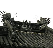 Roof of Qin family's ancestral temples  by nicolaMY