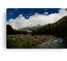 Lupin Valley Canvas Print