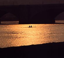 Golden Potomac by djphoto