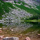Chimney Pond Reflections by Alana Ranney