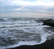 Ocean Drive 1 by blkdenaligrl