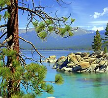 """Good Morning From Lake Tahoe"" by Lynn Bawden"